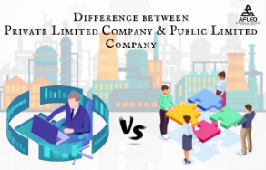 difference between public limited company vs private limited company